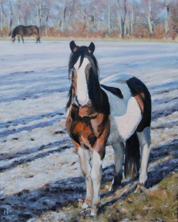 http://www.martentaekema.nl/wp-content/uploads/2010/12/paarden.jpg